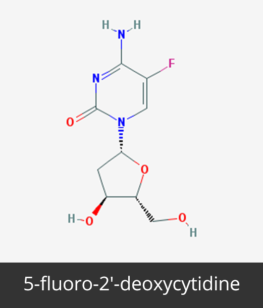 5-fluoro-2′-deoxycytidine_Cancer Epigenetics Society (CES)