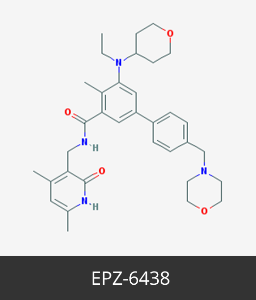 EPZ-6438_Cancer Epigenetics Society (CES)