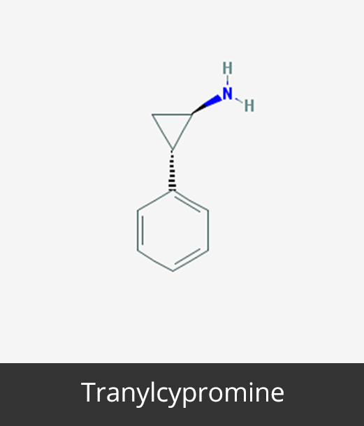 Tranylcypromine_Cancer Epigenetics Society (CES)